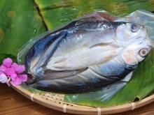 嘉義東石-虱目魚一夜干